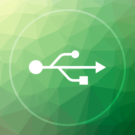 pendrive: USB icon. USB website button on green low poly background. Stock Photo