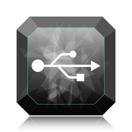 USB icon, black website button on white background.