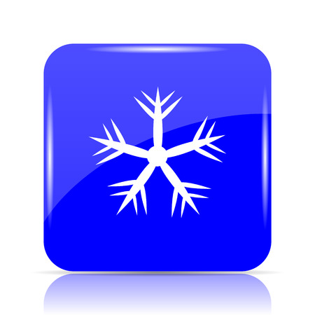 crystal button: Snowflake icon, blue website button on white background.