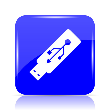 Usb flash drive icon, blue website button on white background.