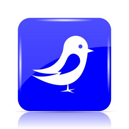 Bird icon, blue website button on white background. Stock Photo
