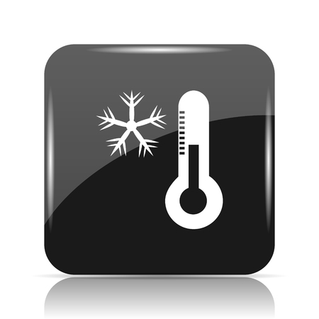 freeze: Snowflake with thermometer icon. Internet button on white background.