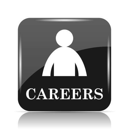 Careers icon. Internet button on white background.