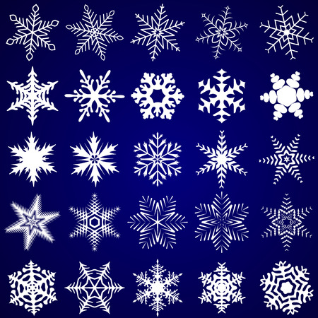 overjoyed: Fancy Decorative Snowflakes Vector Illustration Illustration