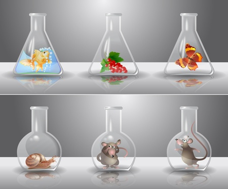 glassware: Laboratory flasks with different living organisms inside Illustration