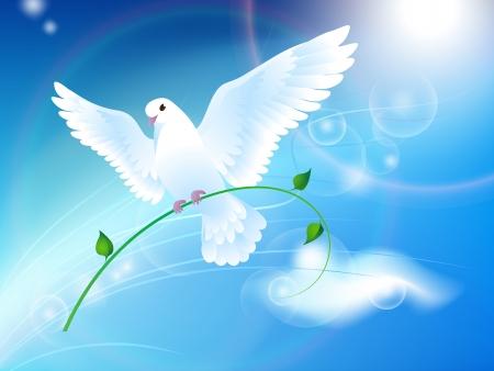 Colombe de la Paix dans le ciel