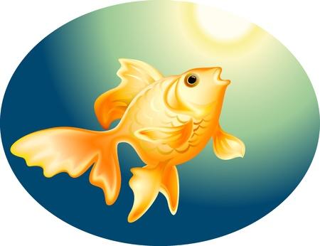 대양의: 바다에서 깊은 황금 물고기