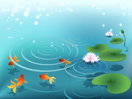 pond water: Pond with goldfish