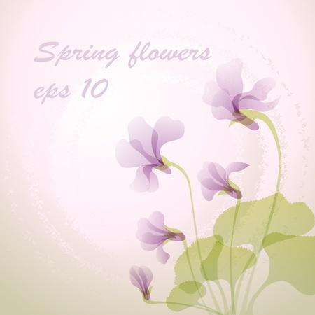 Beautiful spring violet flower Stock Vector - 14021103