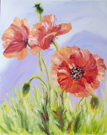 Poppies, , oil painting on canvas photo