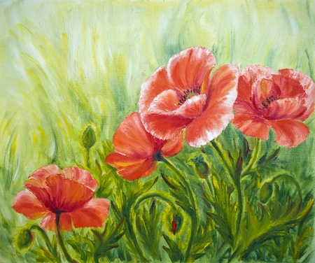 Poppies, , oil painting on canvas Banque d'images