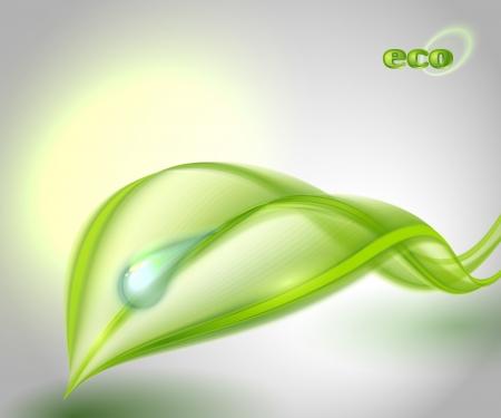 Abstracte achtergrond met groen blad Vector Illustratie