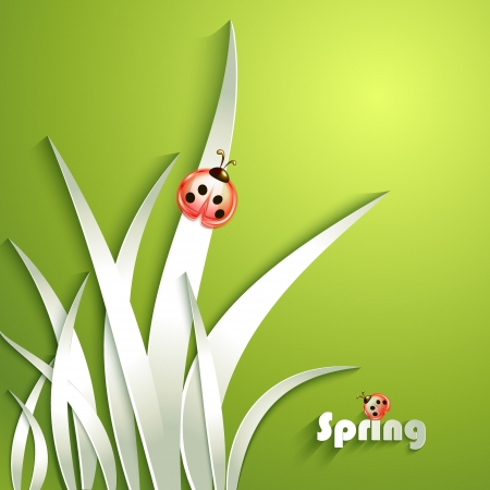 Paper grass with ladybug Stock Vector - 18545536