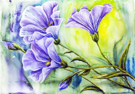 beautiful nature: Wildflowers  Watercolor painting
