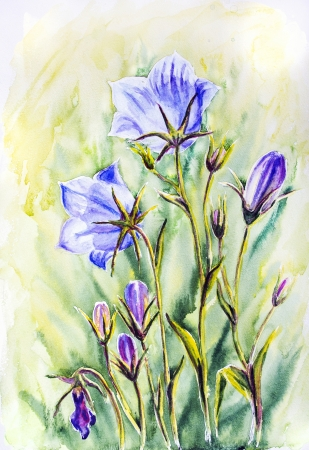 Watercolor painting of the bell flowers photo