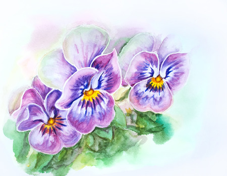 Tender pansies flowers  Watercolor painting  photo