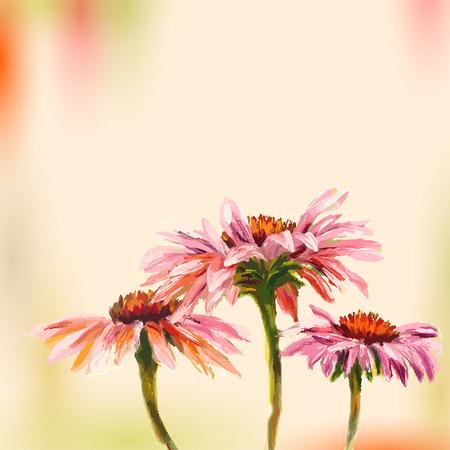 Pintura al óleo Echinacea Tarjeta de felicitación Foto de archivo - 25960301
