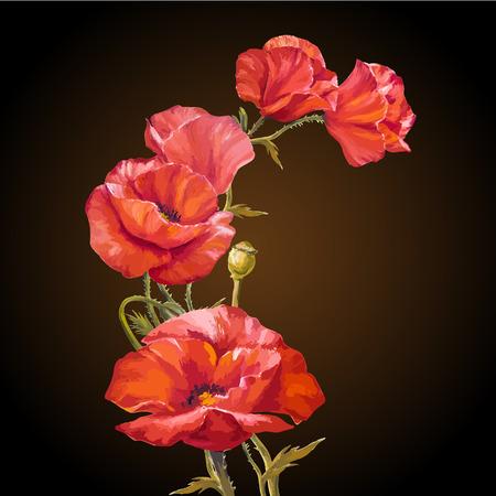 Peinture à l'huile. Carte avec fleurs de coquelicots sur fond darck. Vecteurs