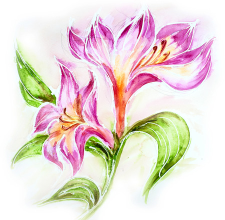 aquarell: Beautiful red flowers  Watercolor painting