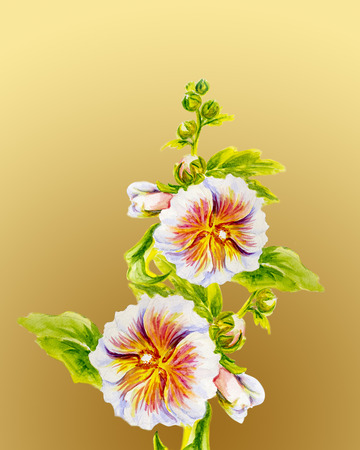 Hollyhock flowers. Watercolor painting. photo