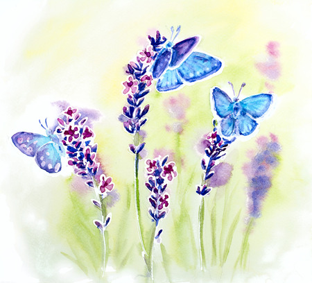 Painted watercolor card with summer lavender flowers and butterflies photo