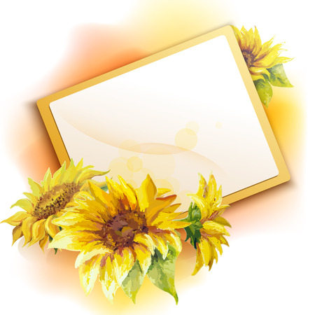 sunflower field: Sunflower frame background, oil painting flower Illustration