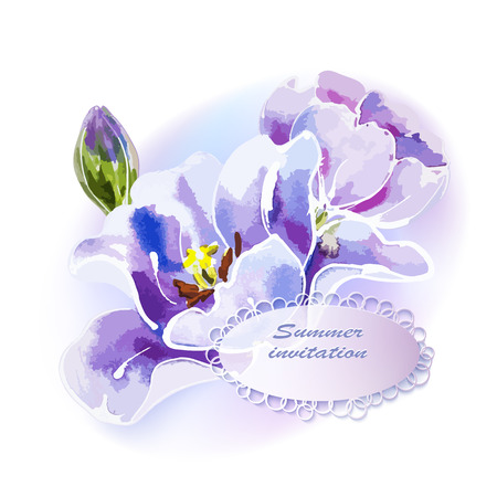 Purple tulip, watercolor painting. Vector