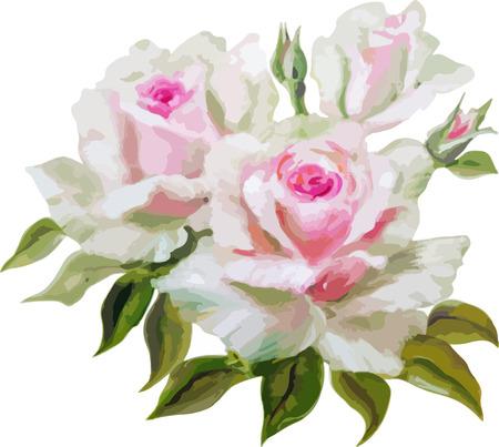 rose garden: Decorative floral background with flowers of rose Illustration