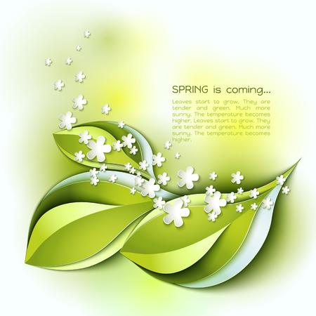 borde de flores: La primavera está llegando vector de fondo abstracto. Hojas verdes y flores blancas. Diseño de papel