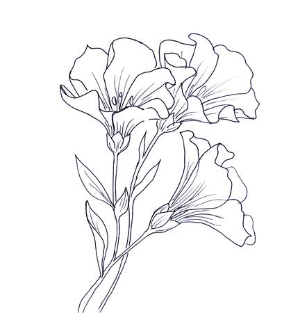 나비와 꽃의 선 잉크 드로잉입니다. 흰색 배경에 검은 컨투어 스톡 콘텐츠