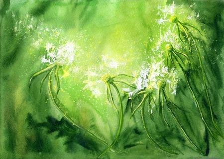 pintura abstracta: fondo verde de la acuarela con los dientes de león