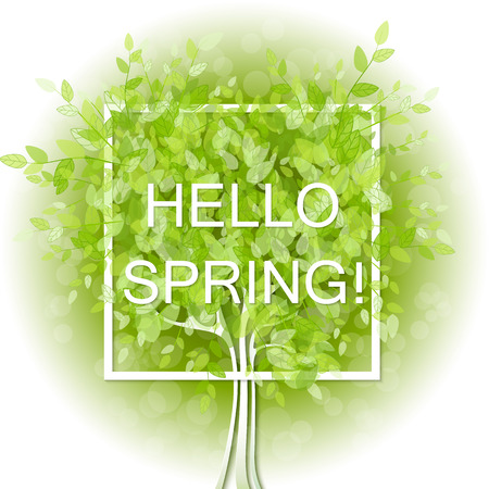 heart shaped leaves: Heart shaped frame on tree background with green leaves. Hello spring