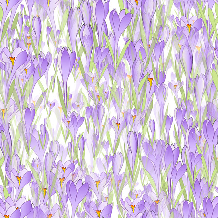 crocus: Vector floral seamless pattern background with snowdrop and crocus flowers Illustration