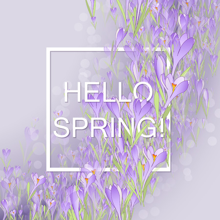 snowdrops: Vector card Hello Spring. Floral frame with crocuses and  snowdrops. Purple background