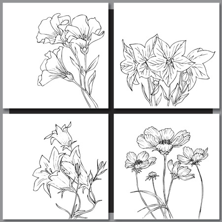 Set of hand drawn flowers sketches for coloring and greeting cards. Vector illustration