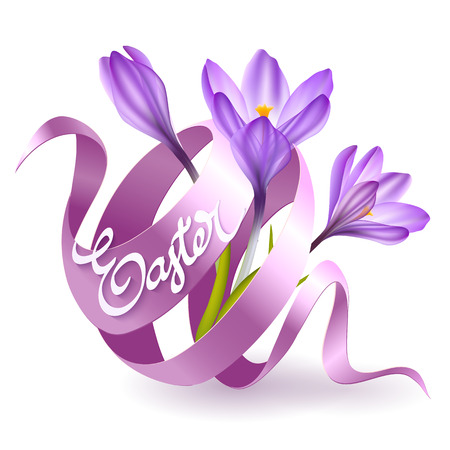 easter flowers: Easter poster with pink ribbon and crocus flowers. Vector illustration