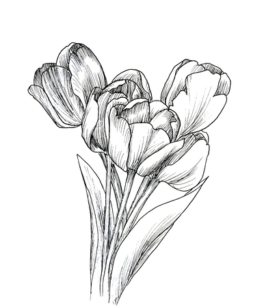 white flowers: Hand drawn decorative tulips isolated on white. Ink sketch Stock Photo