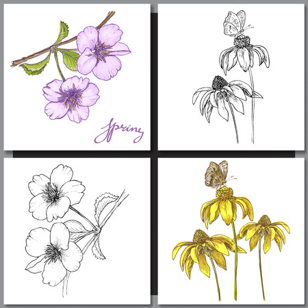 ink drawing: Set of Romantic vector background with hand drawn flowers isolated on white.  Ink drawing illustration. Line art sketching. Floral design for wedding invitations, cards, congratulations, branding. Illustration