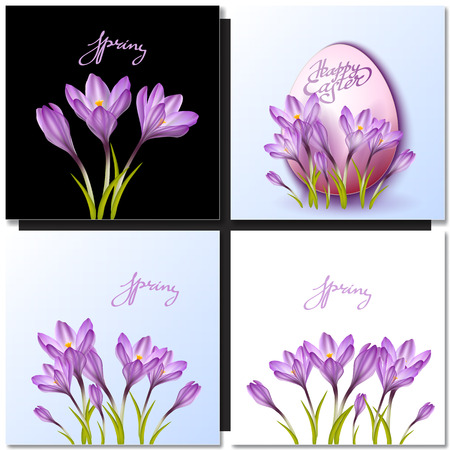 garden flowers: Set of vector flowers and spring lettering. Spring crocus drawings for easter decor, garden backgrounds, floral design.