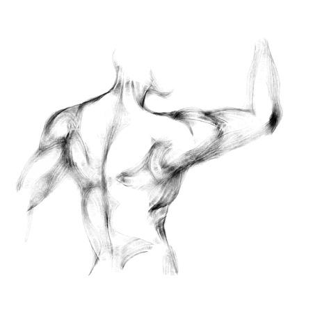 naked male body: Sketch of athletic man back. Artwork vector illustration
