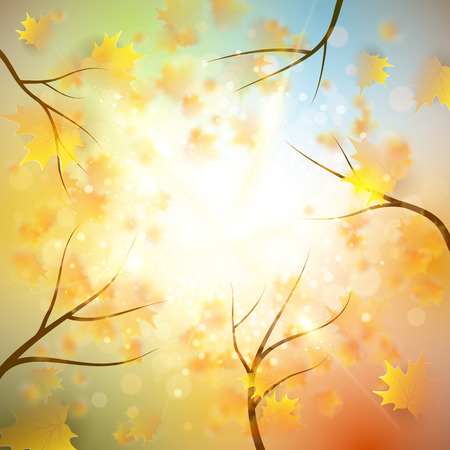 fall leaves background: Autumn background with gold maple leaves and bokeh lights with sunny sky, fall vector illustration