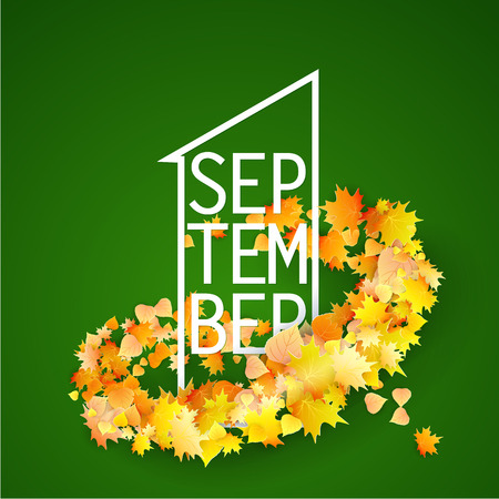 First September Autumn Green Background. Bright autumn maple leaves shaped with curve strip. Vector illustration. Back to school.