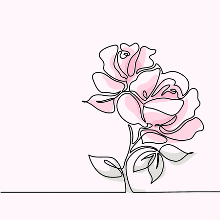 Beautiful soft color pink rose flowers. Continuous line drawing. Vector illustration