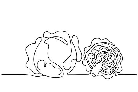 Dibujo continuo de una línea. Verduras dos repollo. Ilustración vectorial