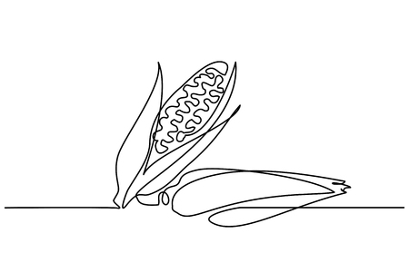 Continuous one line drawing. Vegetables two corn. Vector illustration Çizim