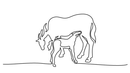 Continuous one line drawing. Horse feeds little foal. Black and white vector illustration. Concept for logo, card, banner, poster, flyer