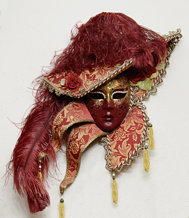 Womens red mask in the hat with red feathers