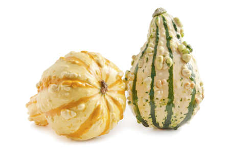 two decorative pumpkins on the white background Stock Photo