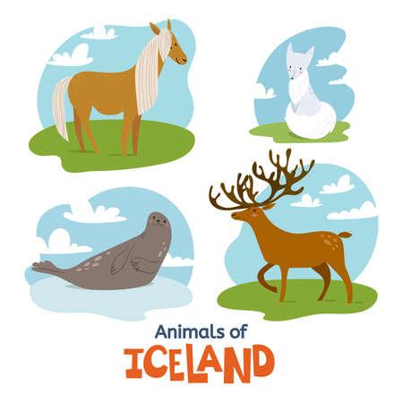 Animals of Iceland in flat modern style design Illustration