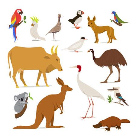 Big set of birds and animals of Australia